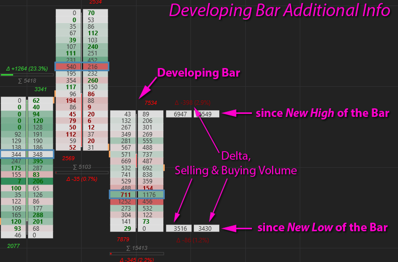 OfB NT8 - Developing Bar Additional Info